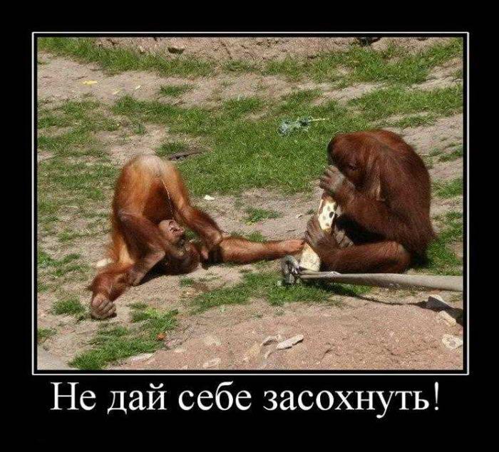 Оккупанты констатировали, что ряд населенных пунктов в Крыму испытывают дефицит воды. В некоторых уже нет и центрального водопровода - Цензор.НЕТ 6717